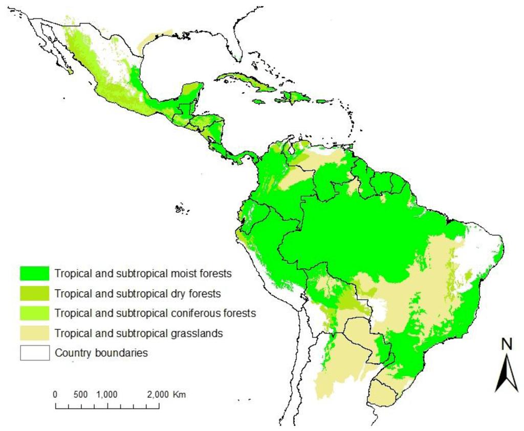 Resultado de imagem para america tropical