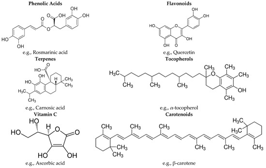 Molecules Free Full Text Potential Use Of Turkish Medicinal