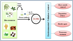 Nanomaterials | Free FullText | Green Synthesis of Iron Nanoparticles and Their Environmental