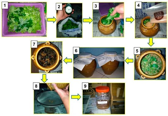 Chemical and Biological Characteristics of Organic Amendments Produced from Selected Agro-Wastes with Potential for Sustaining Soil Health: A Laboratory Assessment | Latest News Live | Find the all top headlines, breaking news for free online April 28, 2021