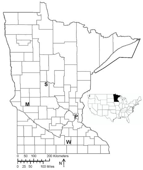 Effects of Selection Regime on Invasive Characteristics in an Emerging Biomass Crop, Switchgrass (Panicum virgatum L.)