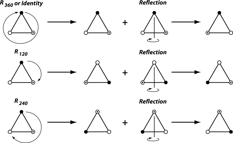 Symmetry | Free Full-Text | Analyzing Fluctuating Asymmetry with Geometric  Morphometrics: Concepts, Methods, and Applications | HTML