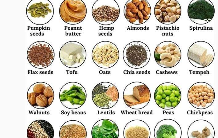 دليل المنتجات النباتية