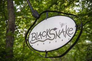 Blacksnake (1)