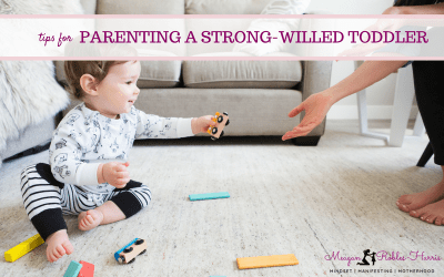 HOW TO HANDLE A STRONG-WILLED TODDLER