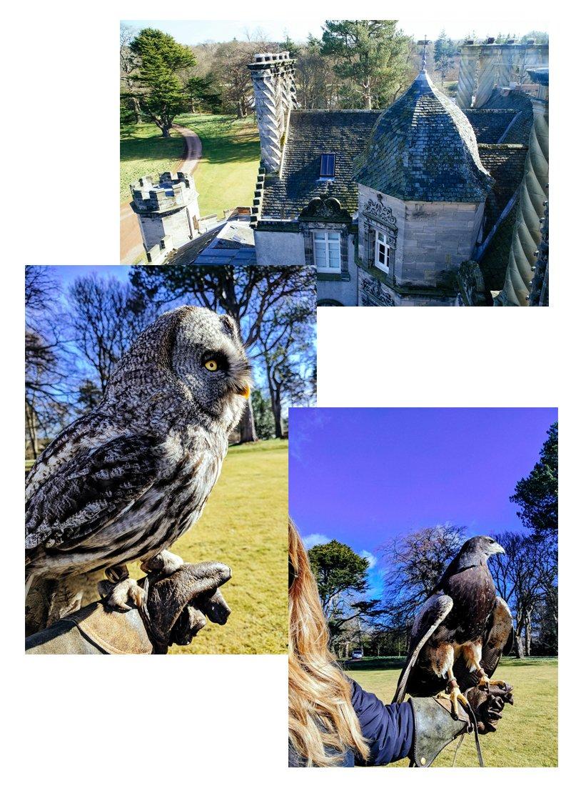 Winton Castle, Edinburgh, Scotland | The Stopover by Meaghan Murray