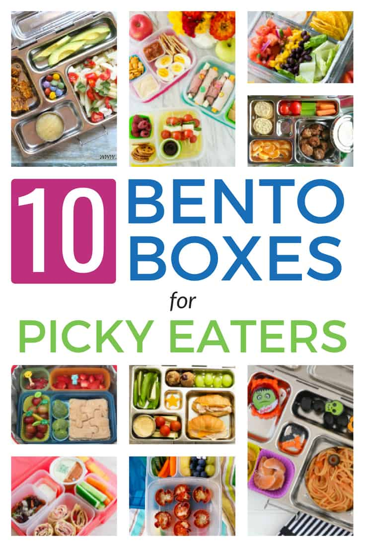 Do you have a Picky eater too? Try these bento box lunchbox ideas that even the pickiest eater will love!