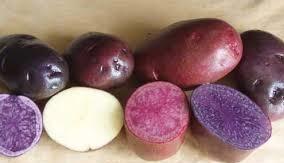 potato Magic
