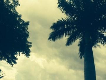 weather19