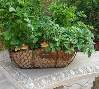 Herb Gardens….