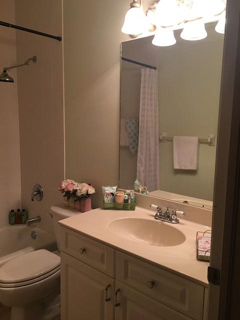 guest hall bathroom