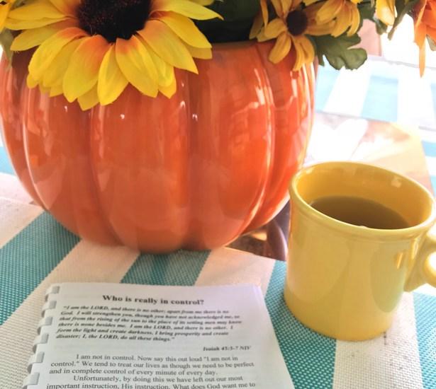 Joy in the Journey devotional book