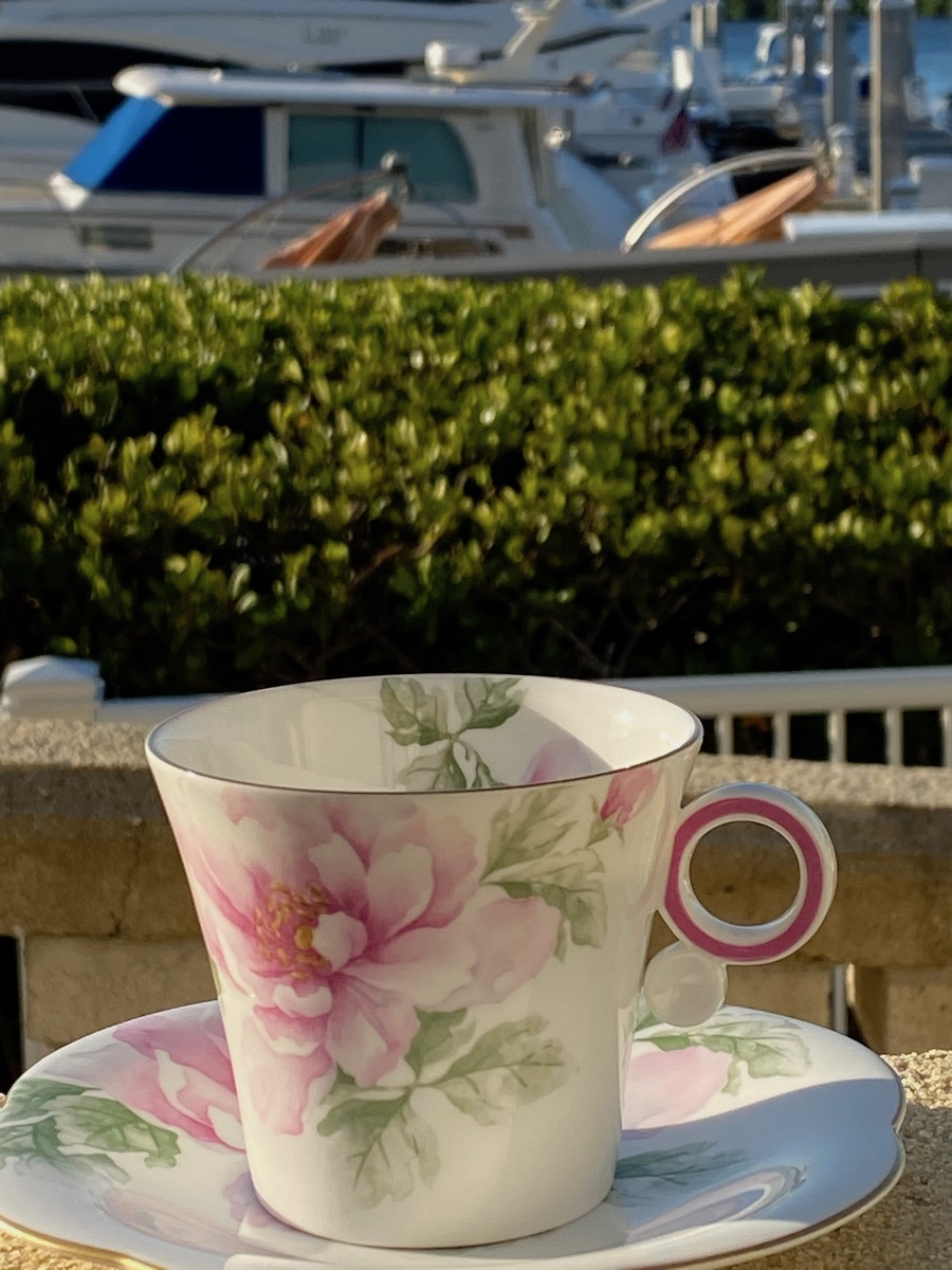 Traveling teacup at Marina on the Gulf of Mexico