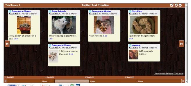 kitten_timeline