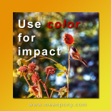Color can direct attention