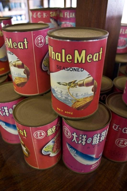 tatamonoen-whale-meat