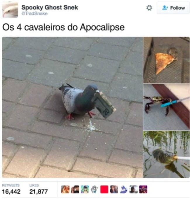 13-tweets-que-levantam-o-animo-de-qualquer-um11