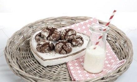 Chocolate Crinkle Top Cookies