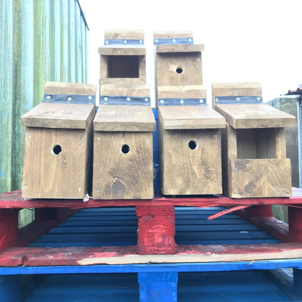 Bird Boxes Bettystown Tidy Towns