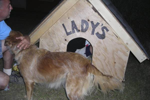 Lady Gets a Home Too