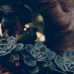 Un article un jour – Créer un kit média – Episode 21