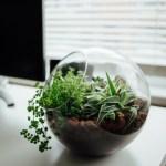 Un article un jour – Les blogs inspirants qui m'aident à travailler – Episode 12