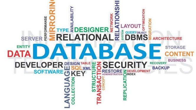 oil and gas data management software