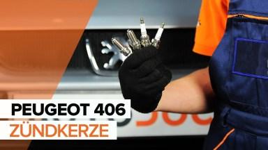 Peugeot 406 Zündkerze