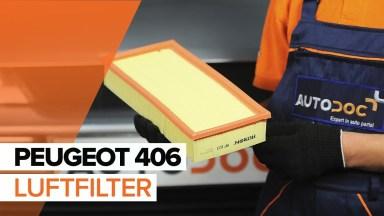 Peugeot 406 Luftfilter