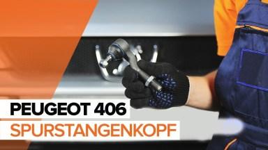 Peugeot 406 Spurstangenkopf
