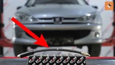 Peugeot 206 Bremsschläuche vorne
