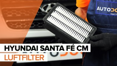Hyundai Santa Fe CM Luftfilter
