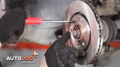 Peugeot 406 Bremsen vorne