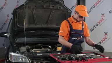 Opel Zafira A Zündkerzen