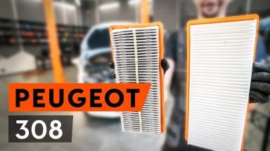 Peugeot 308 Luftfilter