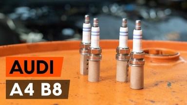 AUDI A4 B8 Zündkerzen