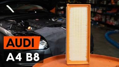 AUDI A4 B8 Luftfilter