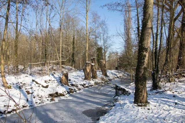 Sneeuwlandschap in Vrijbroekpark Mechelen