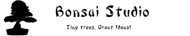 BonsaiStudioHeader