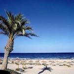 pilar-de-la-horadada-apartment-spanish-rentals-the-beach-at-mil-palmeras--923-1569572