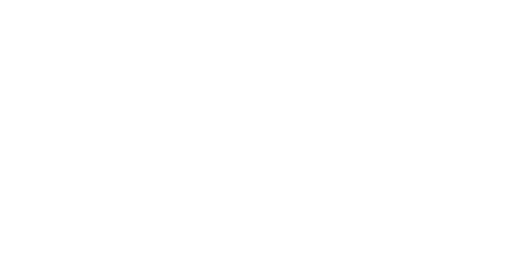 Young Brothers, LLC