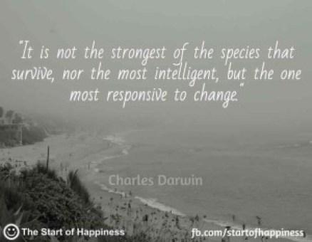 success-quote-36