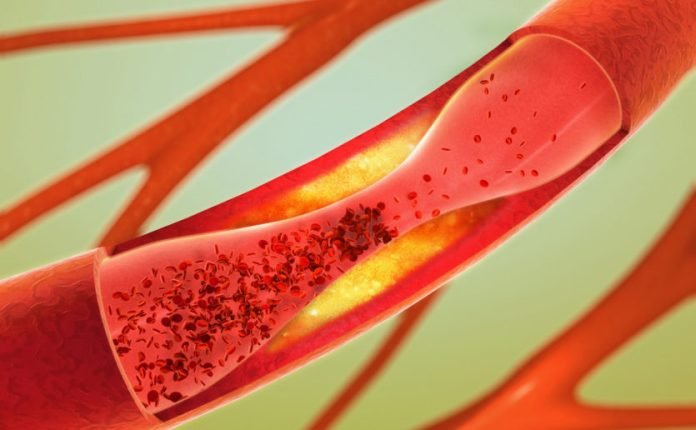 cholesterol-types-functions