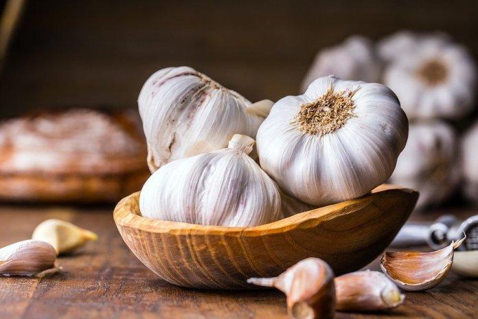 Garlic. Garlic Cloves and Garlic Bulb in a vintage wooden bowl.