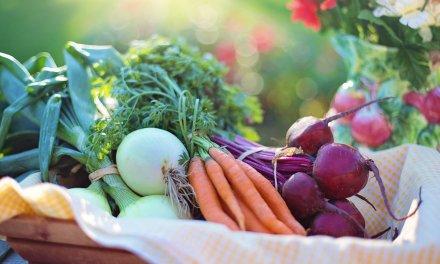 Les bienfaits du jeûne sur le cholestérol