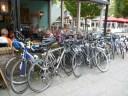Doe mee met Omloop van Noord-Holland