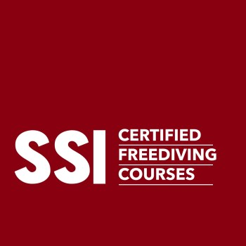 SSI Freediving Courses