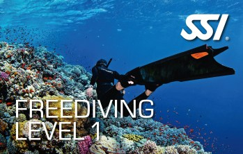 SSI Freediving Level 1