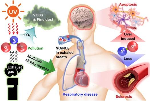 Implantable Biodegradable Sensor Measures Gases Inside The Body 4