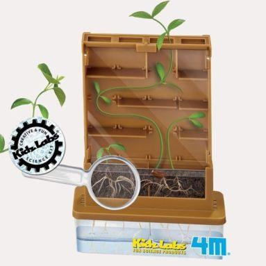 4M - Kidz Labs - Petit jardin d'observation Kit Green Science Faire pousser une plante 4M